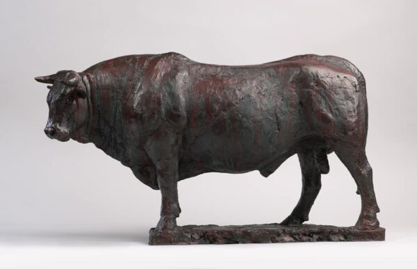 """American Legacy Fine Arts presents """"Bull of Bordeux"""" a sculpture by Peter Brooke."""