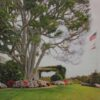 "American Legacy Fine Arts presents ""The tree; Los Angeles"" a painting by Alexander V. Orlov."