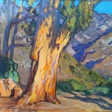"American Legacy Fine Arts presents ""Eucalyptus Mountains; Altadena"" a painting by Tim Solliday."