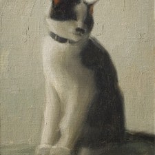 "American Legacy Fine Arts presents ""The Artist's Cat, Sen Sei"" a painting by Aaron Westerberg."