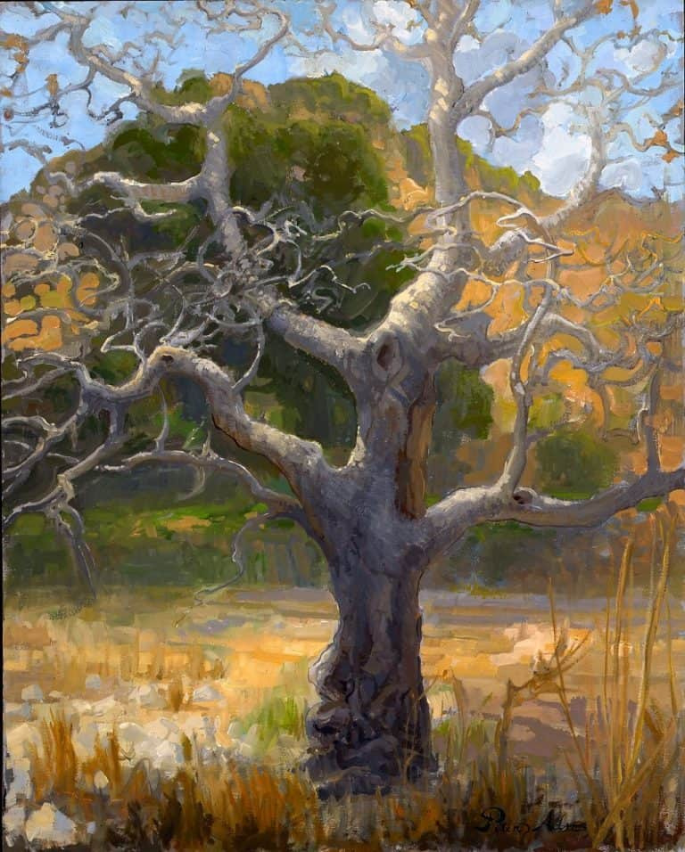 "American Legacy Fine Arts presents ""Bare Branches; Malibu Creek State Park"" a painting by Peter Adams."