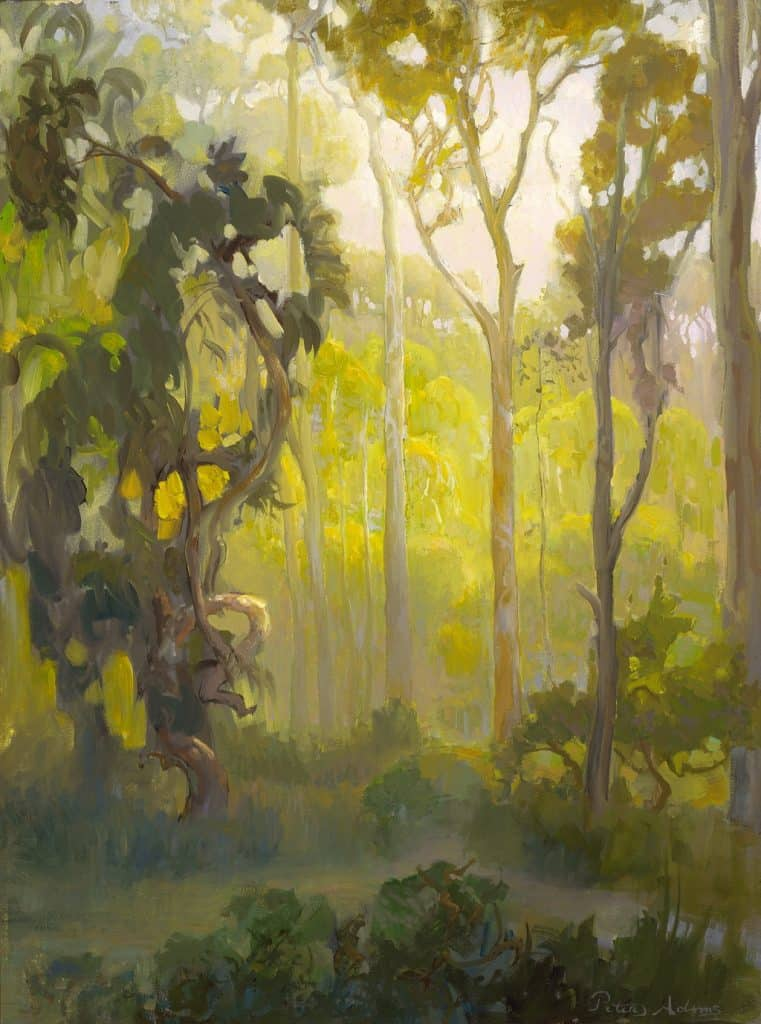 "American Legacy Fine Arts presents ""Afternoon in the Eucalyptus Forest"" a painting by Peter Adams."