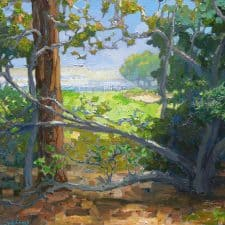 "American Legacy Fine Arts presents ""Hidden View"" a painting by Peter Adams."