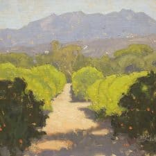 "American Legacy Fine Arts presents ""Sunlit Orchard"" a painting by Dan Schultz."