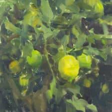 "American Legacy Fine Arts presents ""California Lemon Tree"" a painting by Quang Ho."