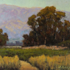 """American Legacy Fine Arts presents """"October Foothills"""" a painting by Steve Curry."""