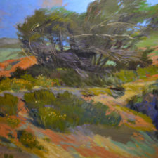 "American Legacy Fine Arts presents ""Prevailing Winds; Leo Carrillo Park, Malibu"" a painting by Chuck Kovacic."